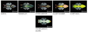 colores megabass cicada